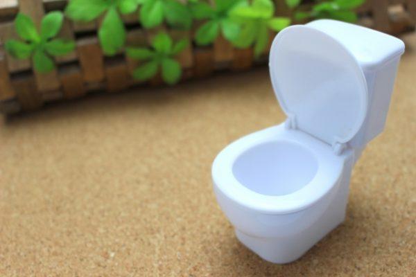【トイレの風水】伝統風水でみる注意点と色・掃除について