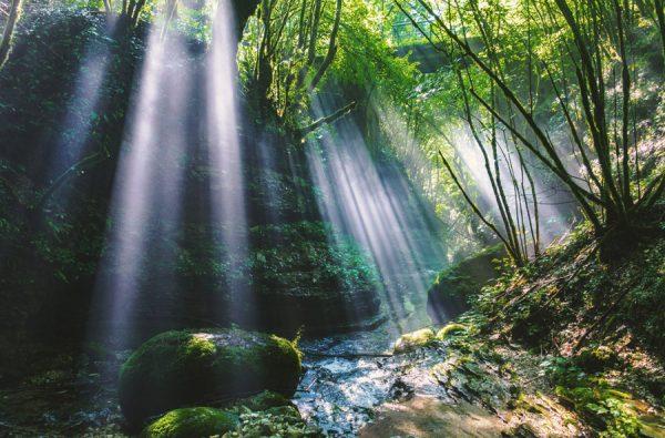 陰陽とは~この世で生きるための自然のルール~