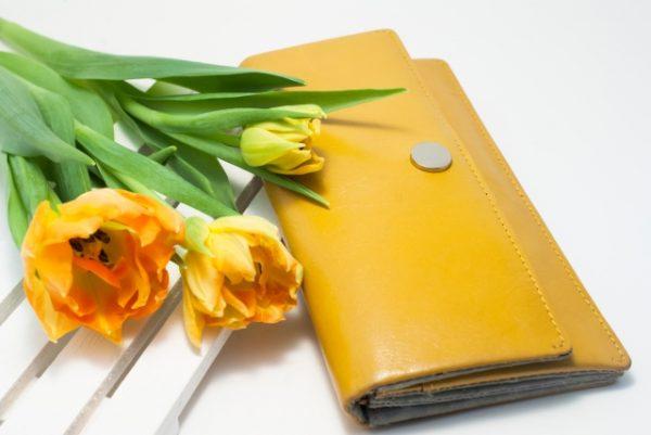 財布は何色が良い?~個人で違う★あなたの新春財布、春財布の色はこれ!~