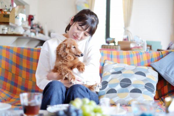 独身女性がペットを飼う と結婚できない、は本当?【風水師の嫁が解説!】